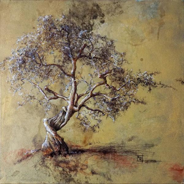 Dancing tree - 50x50 _ DSC09940 DEF